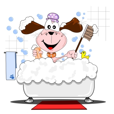 Dog Grooming Certificate